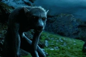 remus-lupin-werewolf--large-msg-130956007302